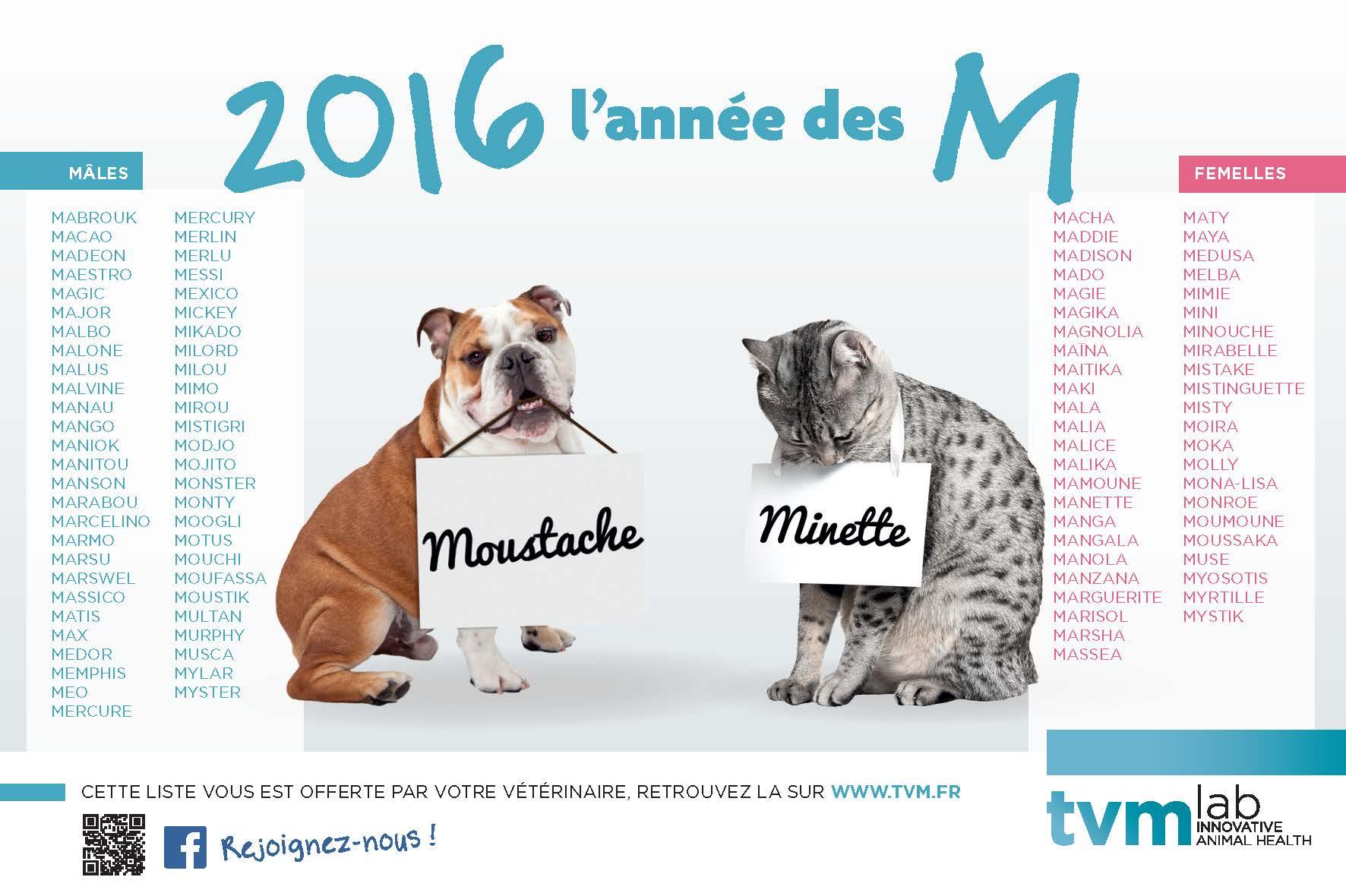 Extrêmement La lettre de l'année | Cabinet Vétérinaire des Chantannes NT02