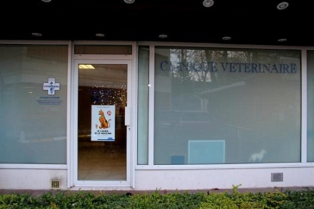 CLINIQUE VETERINAIRE ELYSEE