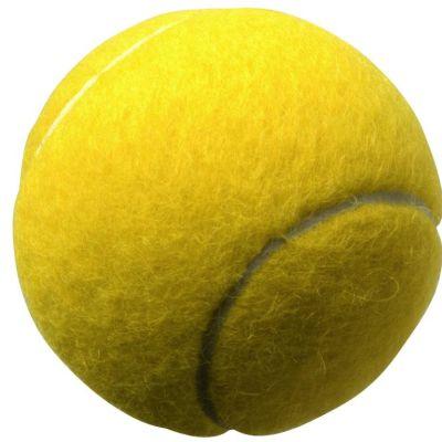 Du bon usage de la baballe de tennis dr morgane collin - Lanceur de balles pour chien ...