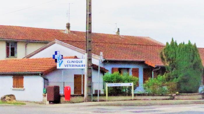 clinique veterinaire st denis les bourg bourg en bresse peronnas